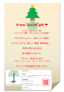 X'mas special gift / 12/21(月)〜25(金)